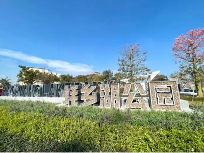 沙井蚝乡湖公园12月27日开放,沙井新添休闲好去处,茅洲河治污显成效