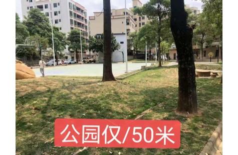 企石东山花园