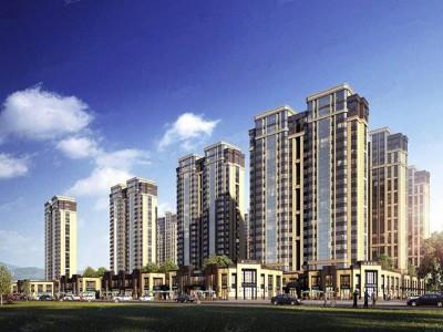 东莞小产权房的被广泛关注的主要原因是什么?