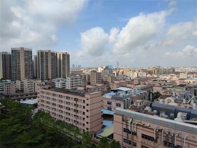 深圳小产权房三规是什么?哪些小产权房可以通过三规转正