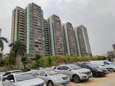 深圳小产权房到底还有没有生存空间?集资房该如何自处?