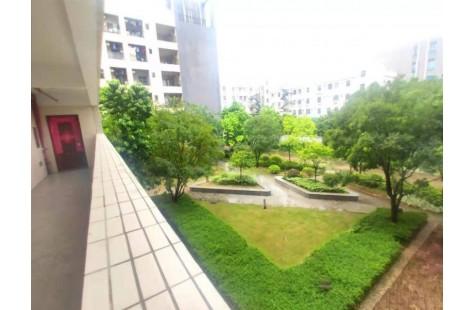 凤岗国新花园